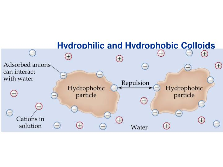 Hydrophilic and Hydrophobic Colloids