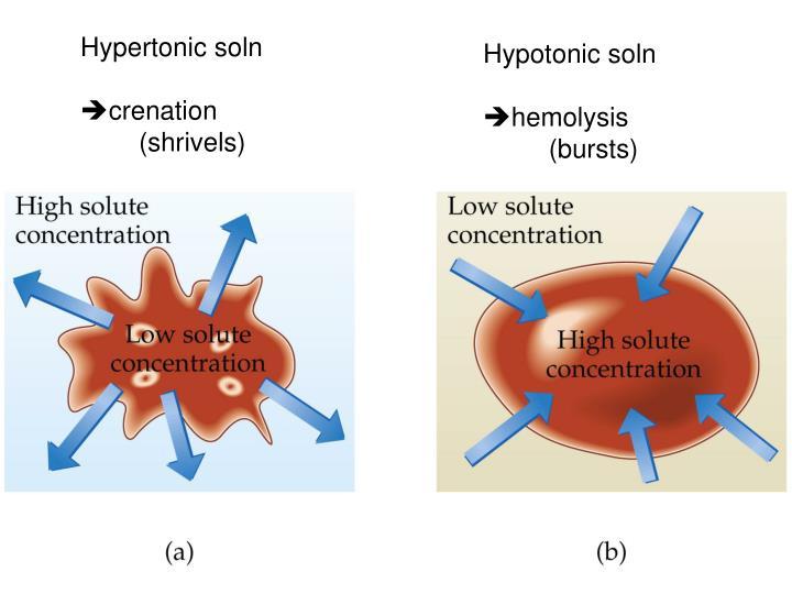 Hypertonic soln