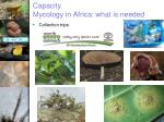 capacity mycology in africa what is needed