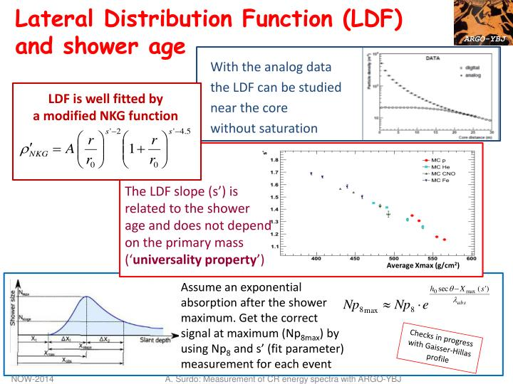 Lateral Distribution Function (LDF)