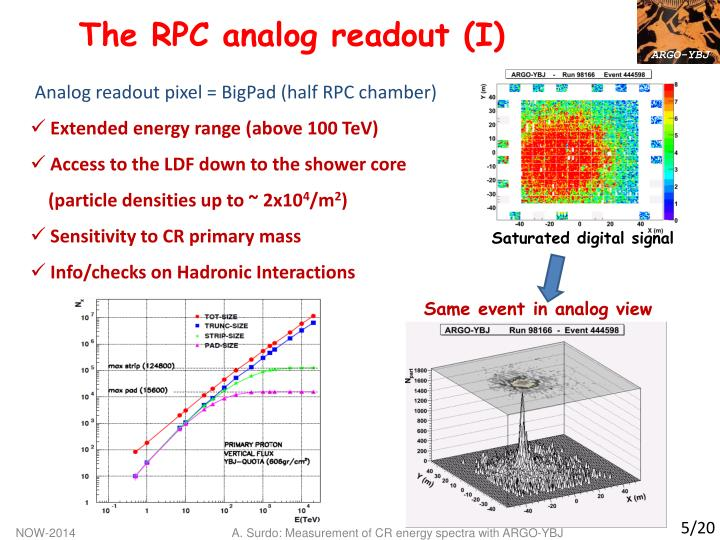 The RPC analog readout (I)