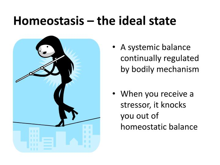 Homeostasis – the ideal state