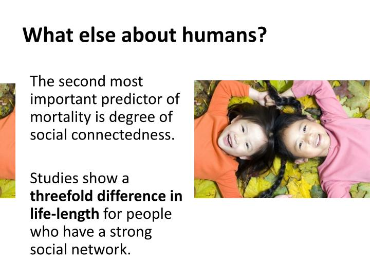 What else about humans?
