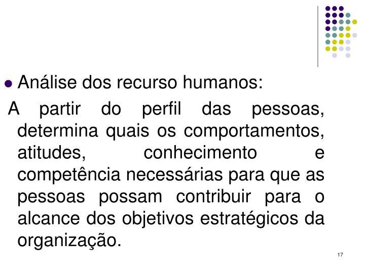 Análise dos recurso humanos: