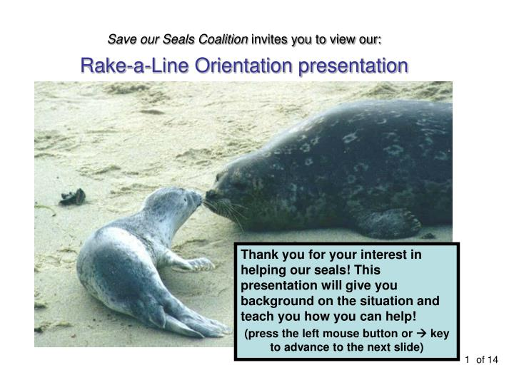 Save our Seals Coalition