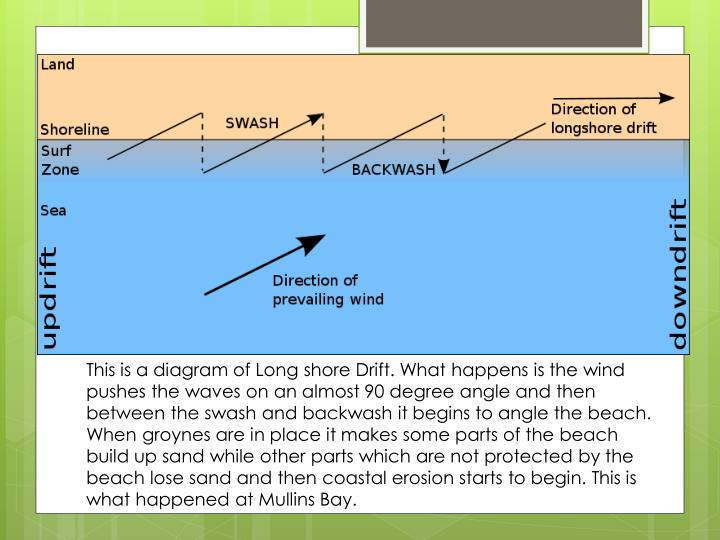 This is a diagram of Long shore Drift. What happens is the wind pushes the waves on an almost 90 degree angle and then between the swash and backwash it begins to angle the beach. When groynes are in place it makes some parts of the beach build up sand while other parts which are not protected by the beach lose sand and then coastal erosion starts to begin. This is what happened at Mullins Bay.
