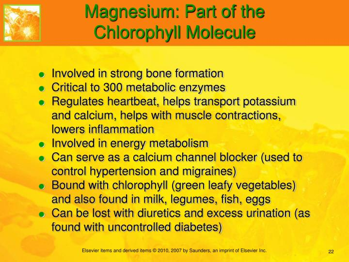 Magnesium: Part of the Chlorophyll Molecule