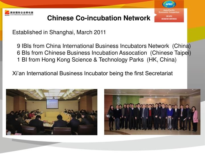 Chinese Co-incubation Network