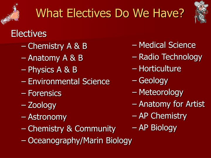 What Electives Do We Have?