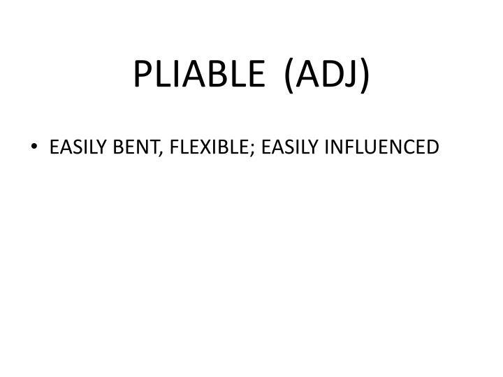 PLIABLE (ADJ)