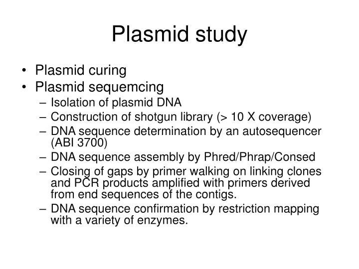Plasmid study