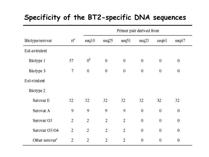 Specificity of the BT2-specific DNA sequences