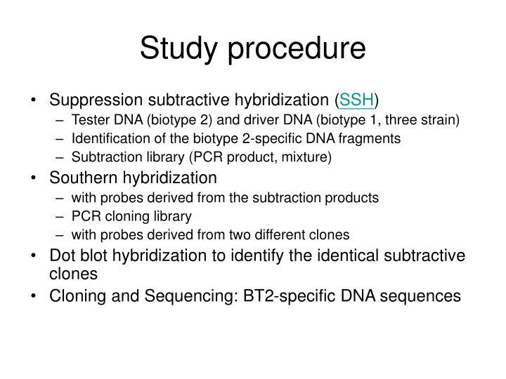 Study procedure