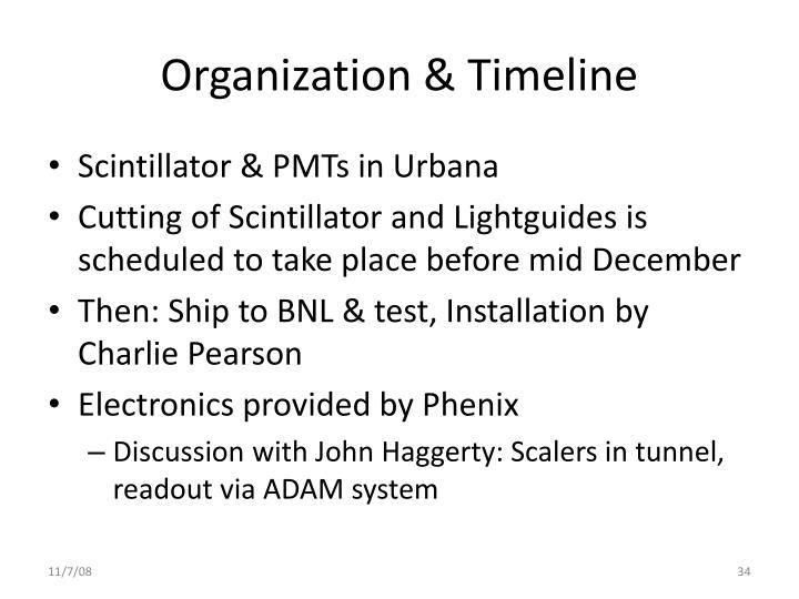 Organization & Timeline