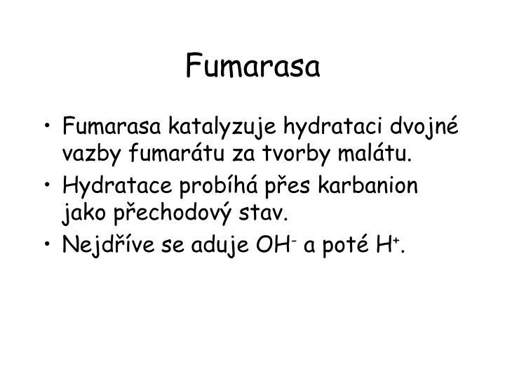 Fumarasa