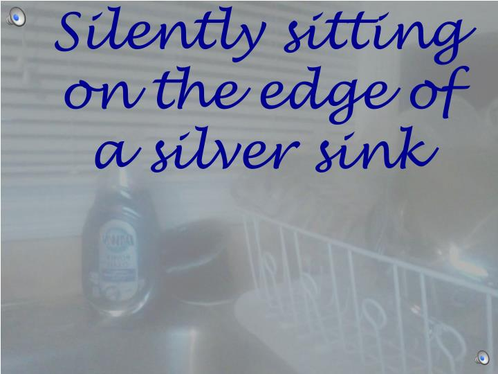 Silently sitting on the edge of a silver sink