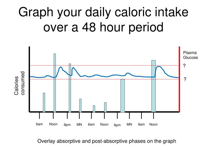 Graph your daily caloric intake over a 48 hour period