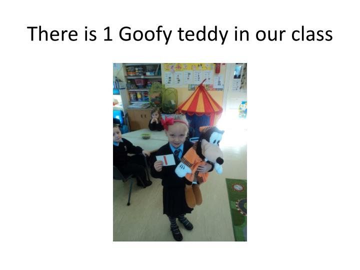There is 1 goofy teddy in our class