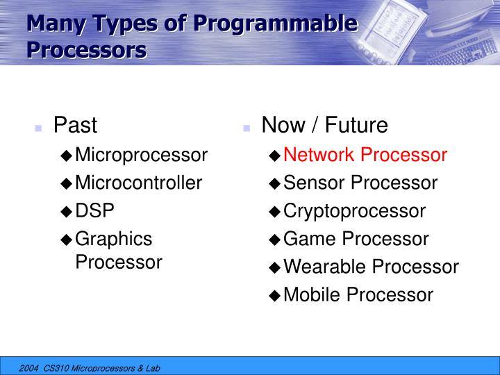 Many Types of Programmable Processors