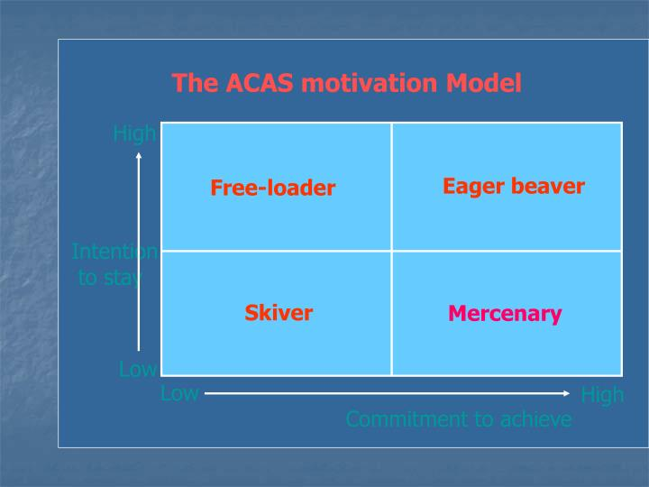 The ACAS motivation Model