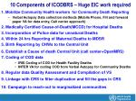 10 components of icodbrs huge eic work required