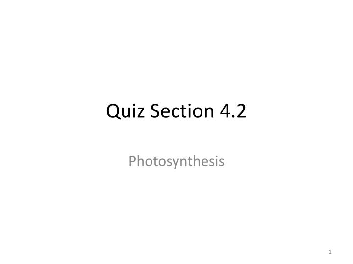 Quiz section 4 2