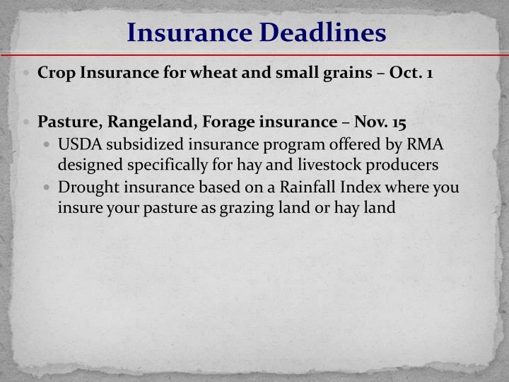 Insurance Deadlines