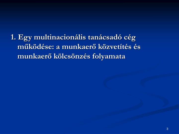 1. Egy multinacionális tanácsadó cég működése: a munkaerő közvetítés és munkaerő kölcsönzés folyamata