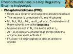 phosphofructokinase is a key regulatory enzyme in glycolysis