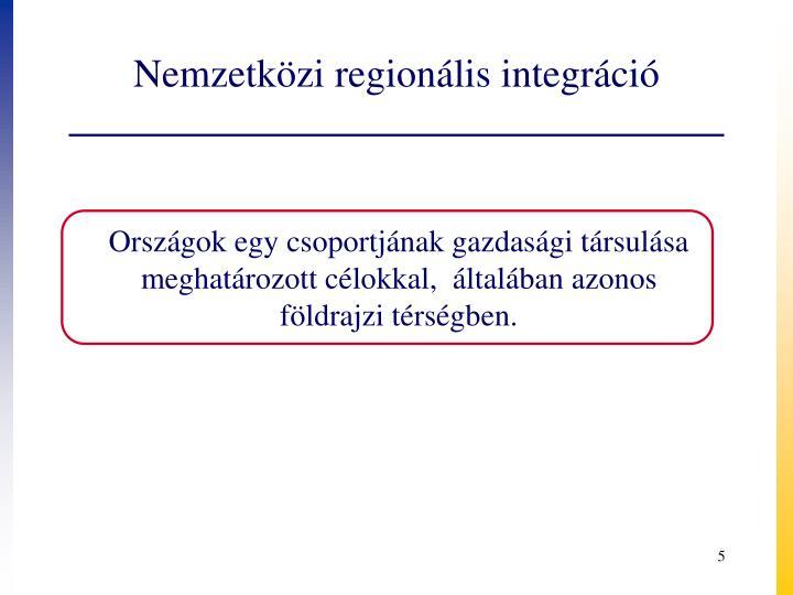 Nemzetközi regionális integráció