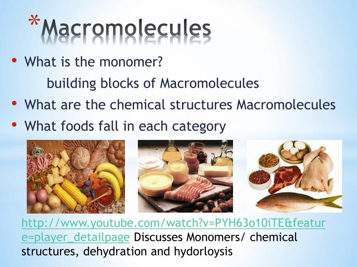 what is the relationship between food atoms molecules and macromolecules