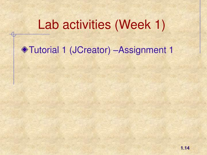 Lab activities (Week 1)