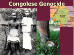 congolese genocide