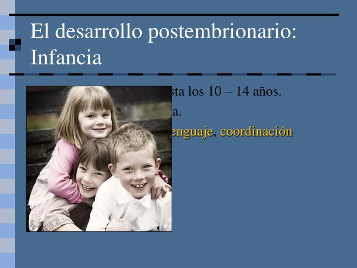 El desarrollo postembrionario: Infancia