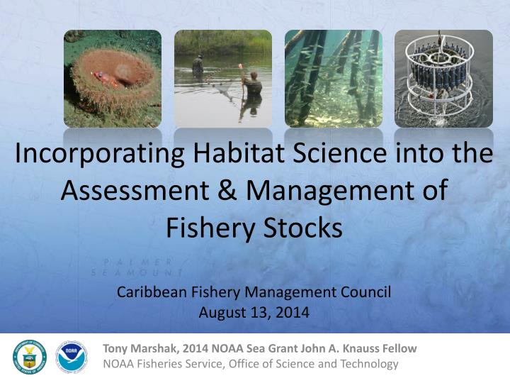 Incorporating Habitat Science into the Assessment & Management of Fishery Stocks