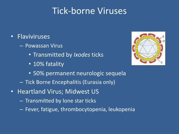 Tick-borne Viruses