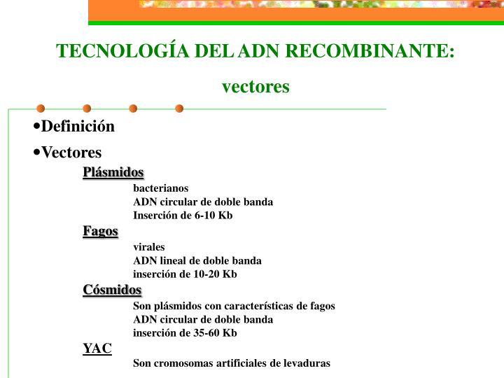 TECNOLOGÍA DEL ADN RECOMBINANTE: