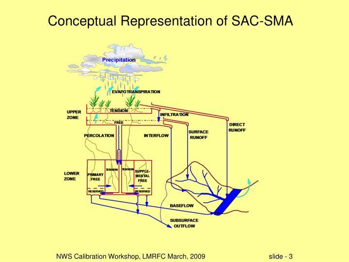 Conceptual Representation of SAC-SMA