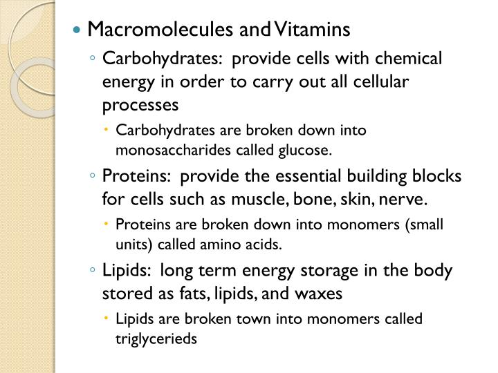 PPT - Nutrition PowerPoint Presentation - ID:6242151