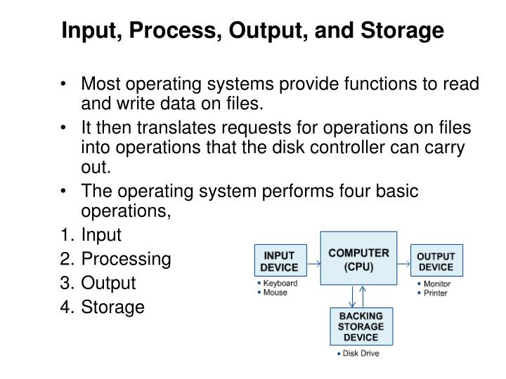 Input, Process, Output, and Storage
