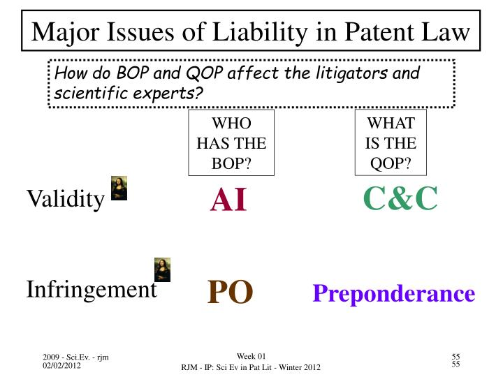 Major Issues of Liability in Patent Law