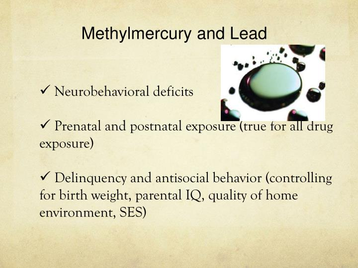 Methylmercury and Lead