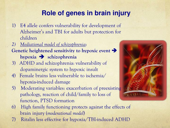 Role of genes in brain injury