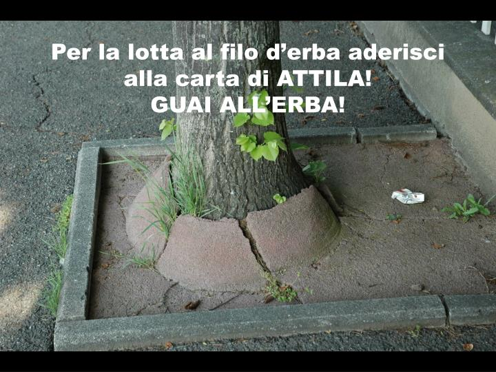 Per la lotta al filo d'erba aderisci alla carta di ATTILA!