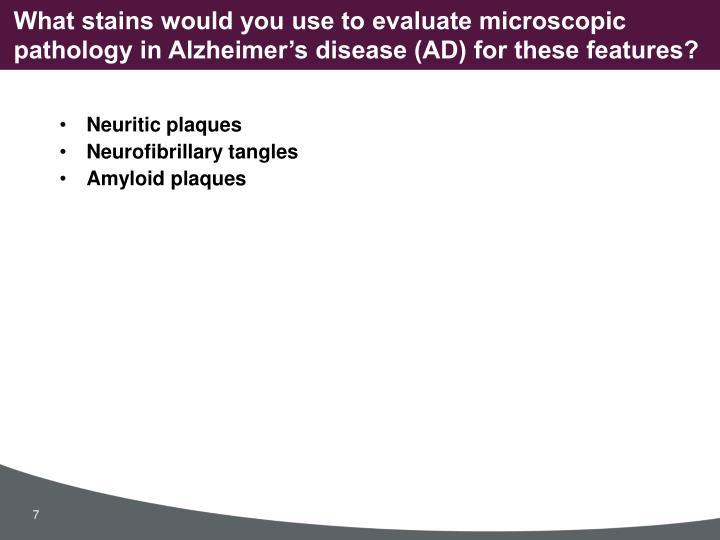 Neuritic plaques