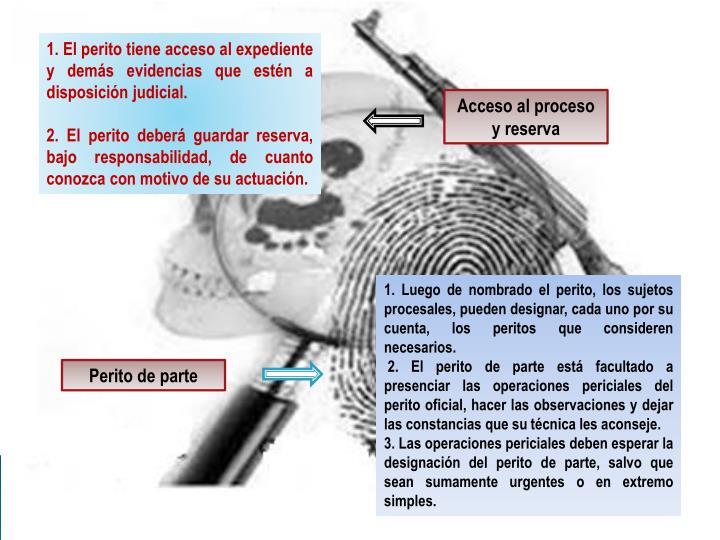 1. El perito tiene acceso al expediente y demás evidencias que estén a disposición judicial.