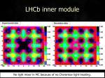 lhcb inner module