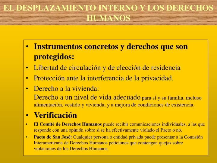 Instrumentos concretos y derechos que son protegidos: