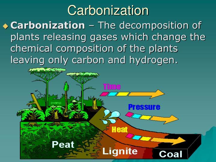 Carbonization