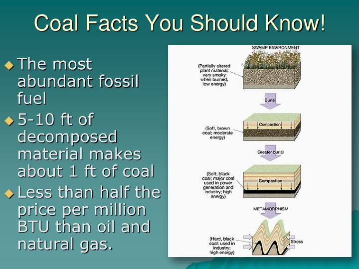 Coal Facts You Should Know!